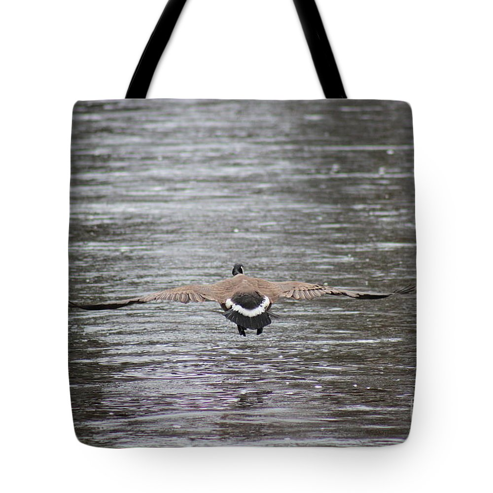 Bird Tote Bag featuring the photograph Fasten Your Seatbelts by Stephanie Kripa