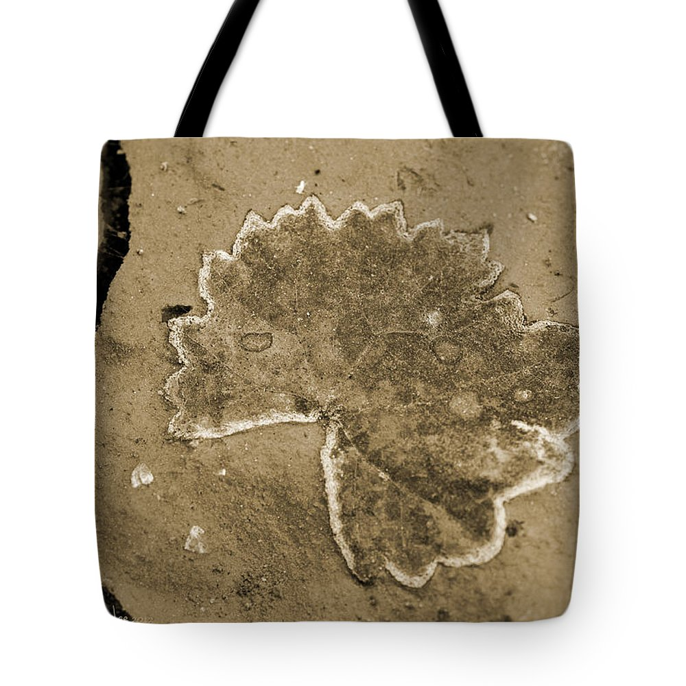 Leaf Tote Bag featuring the photograph Faux Fossil by Christine Stonebridge