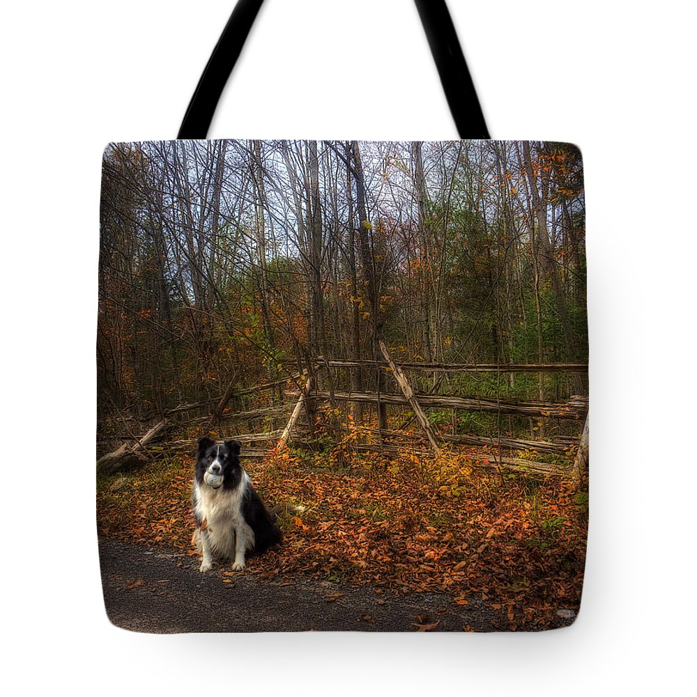 Xdop Tote Bag featuring the photograph Fence With Moon by John Herzog