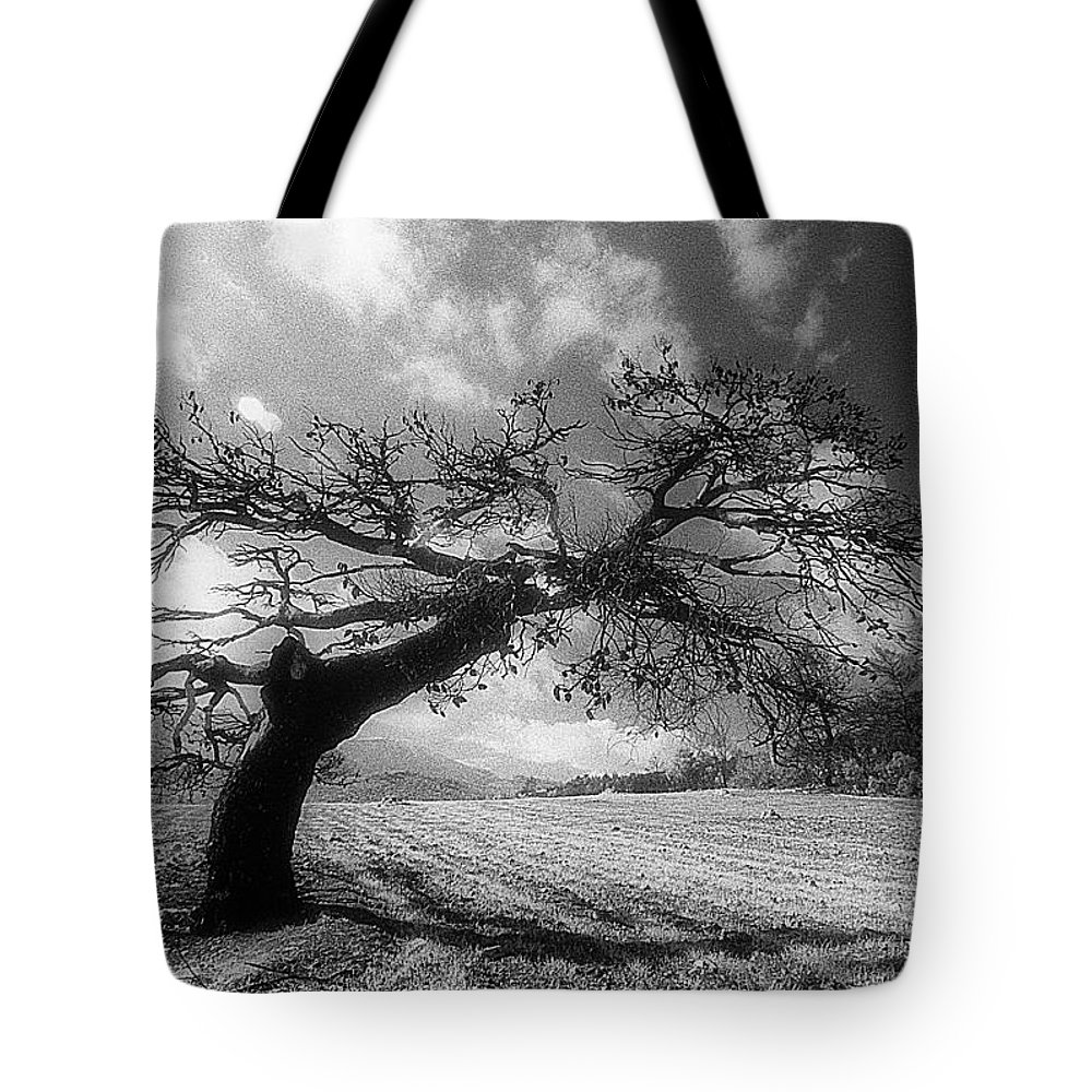 B/w Kodak Infrared Photography Tote Bag featuring the photograph Field At Rest by Andonis Katanos