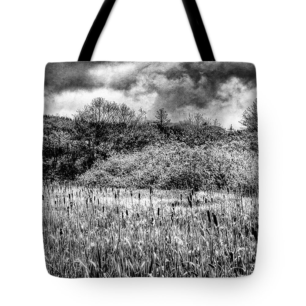 Cattails Tote Bag featuring the photograph Field Of Cattails II by David Patterson