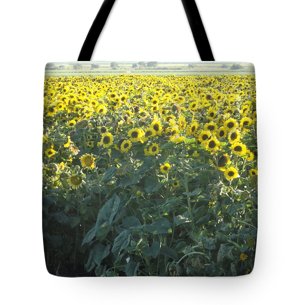 Sunflower Tote Bag featuring the photograph Field Of Dreams by Shannon Grissom