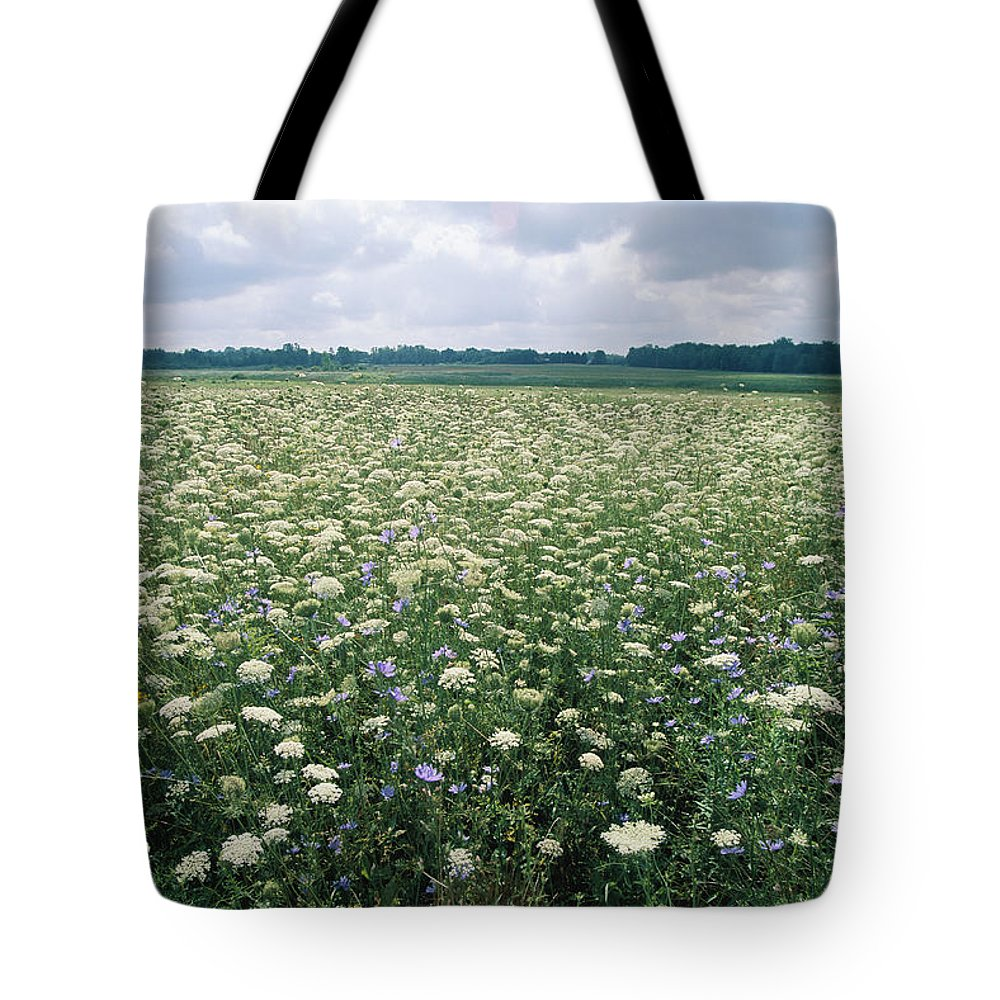 North America Tote Bag featuring the photograph Field Of Wildflowers, Montezuma by Skip Brown