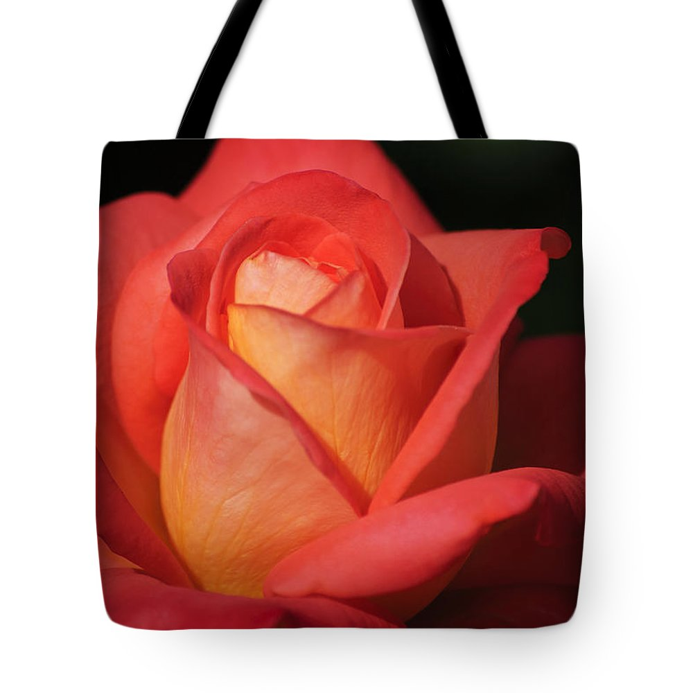 Red Tote Bag featuring the photograph Fiery Color Rose by Diego Re