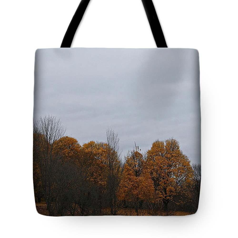 Outdoors Tote Bag featuring the photograph Final Color by Susan Herber
