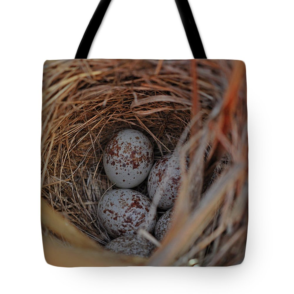 Birds Tote Bag featuring the photograph Finch Nest With Eggs by Brittany Horton