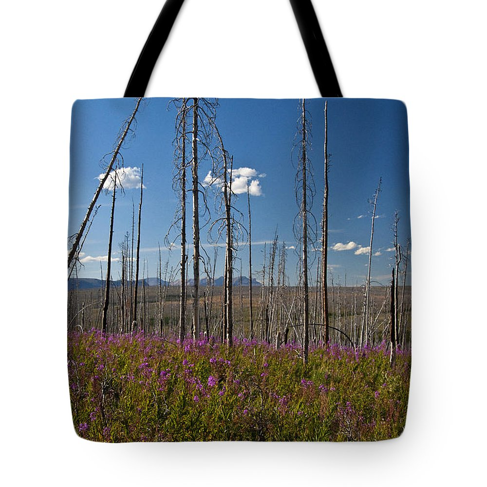 Fireweed Epilobium Angustifolium Glacier National Park Usa Tote Bag featuring the photograph Fireweed Epilobium Angustifolium Glacier National Park Usa -1 by Paul Cannon