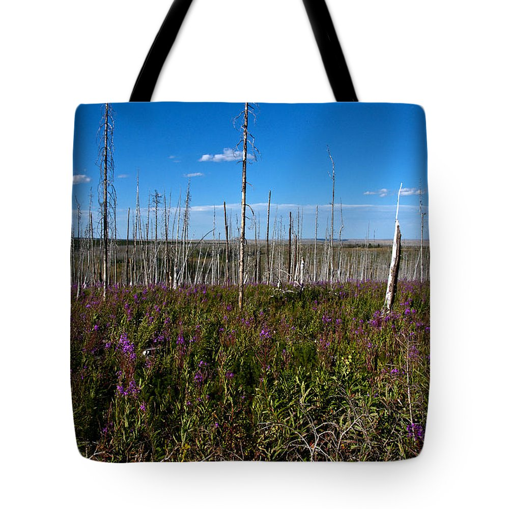 Fireweed Epilobium Angustifolium Glacier National Park Usa Tote Bag featuring the photograph Fireweed Epilobium Angustifolium Glacier National Park Usa -2 by Paul Cannon
