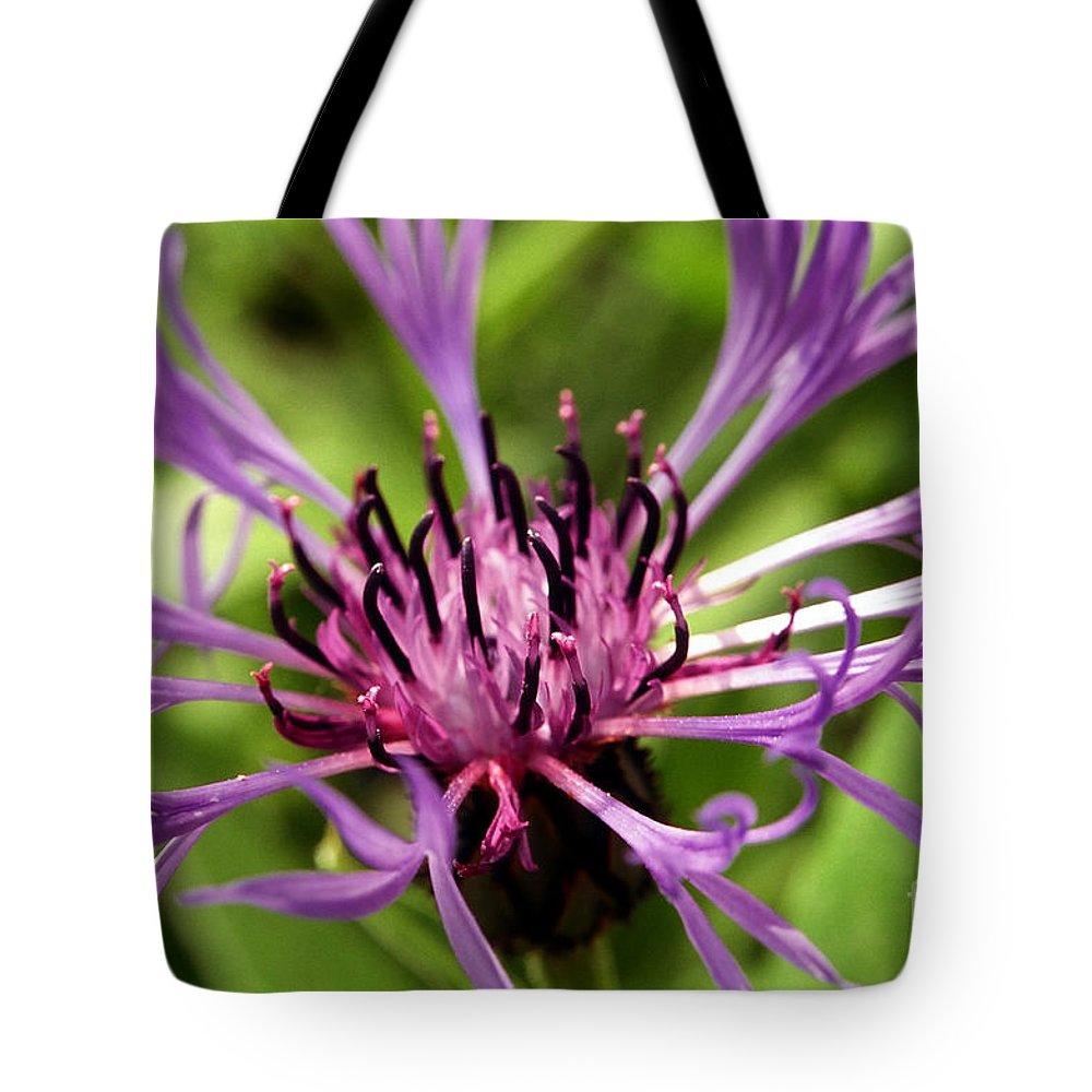 Purple Tote Bag featuring the photograph Firework Flower by Amanda Jones