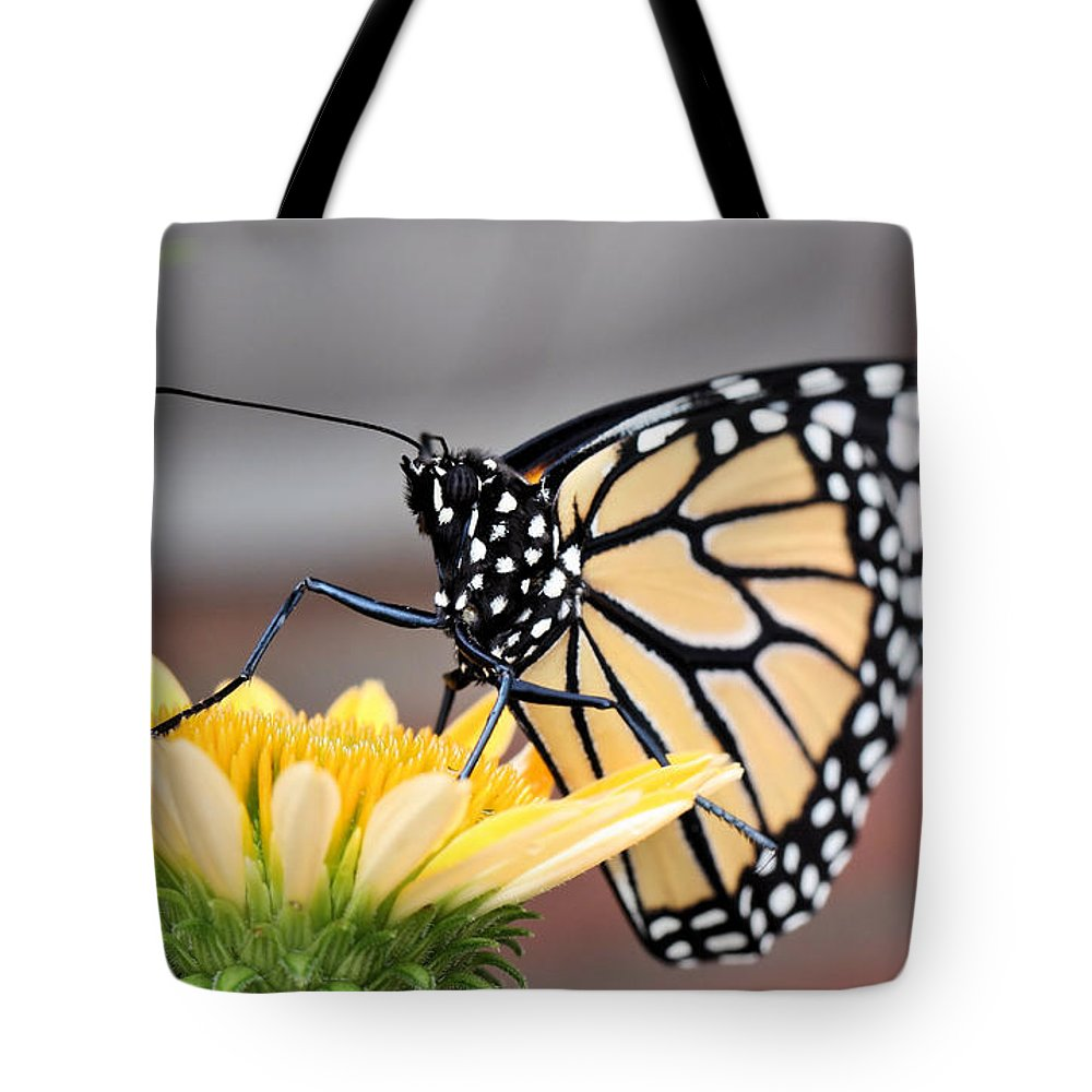 Monarch Butterfly Tote Bag featuring the photograph First Bloom by Katherine White
