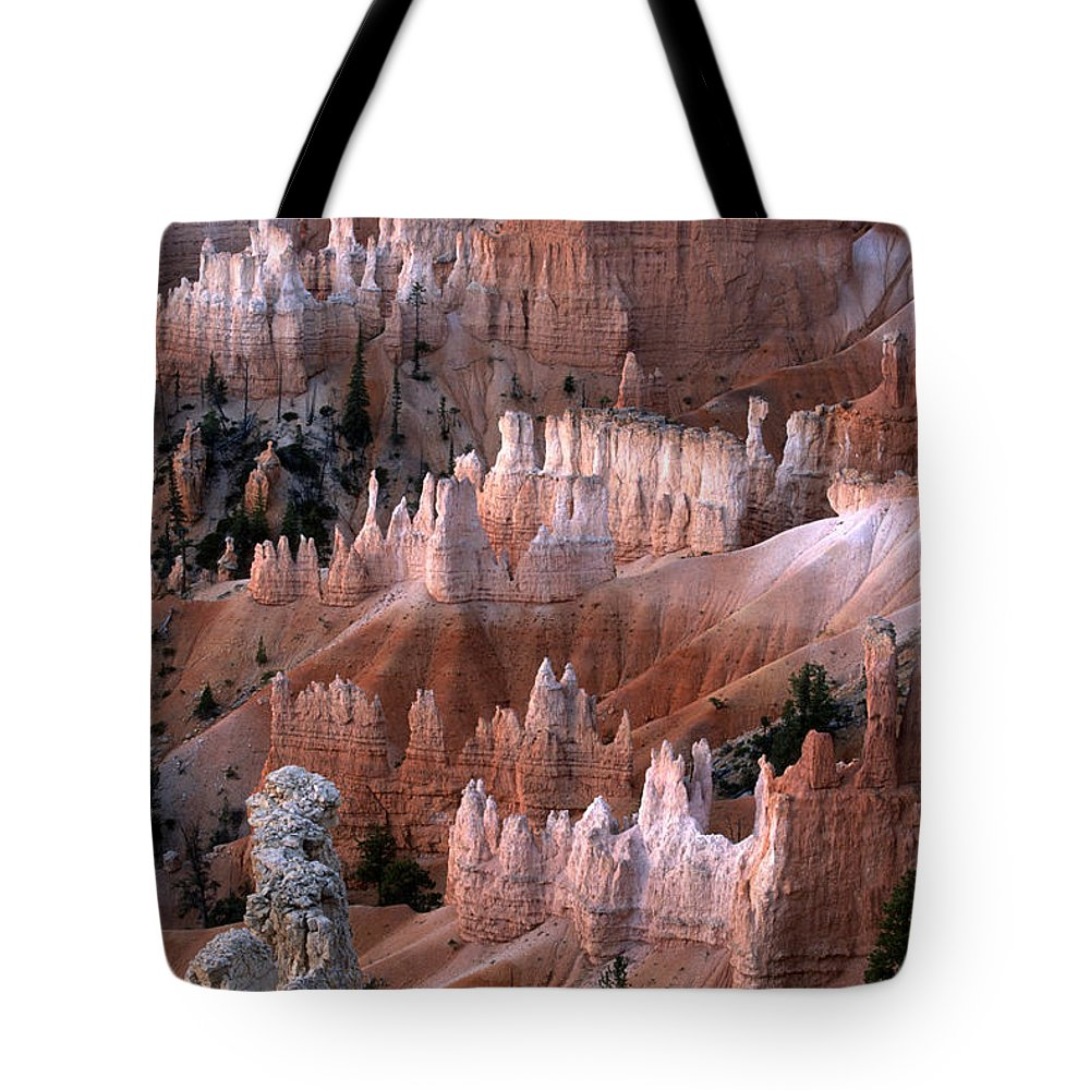 Sandra Bronstein Tote Bag featuring the photograph First Light In Bryce Canyon by Sandra Bronstein