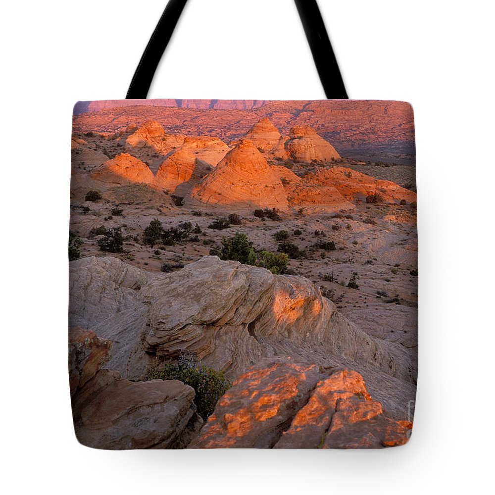 Sandra Bronstein Tote Bag featuring the photograph First Light On Little Cut by Sandra Bronstein