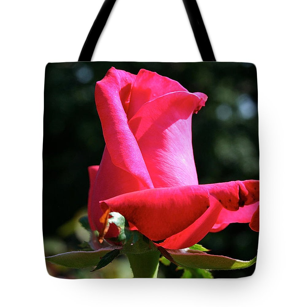 Outdoors Tote Bag featuring the photograph First Petal by Susan Herber