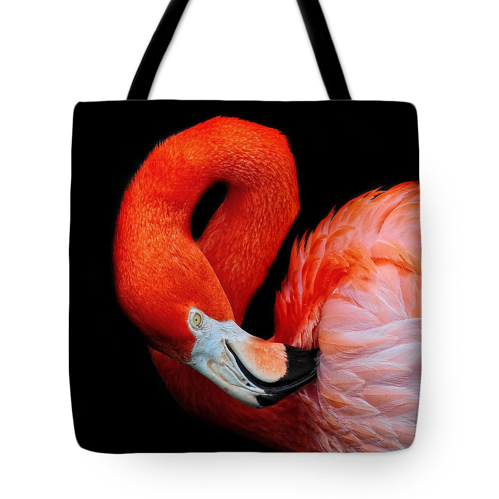 Flamingo Tote Bag featuring the photograph Flamingo Preening by Dave Mills