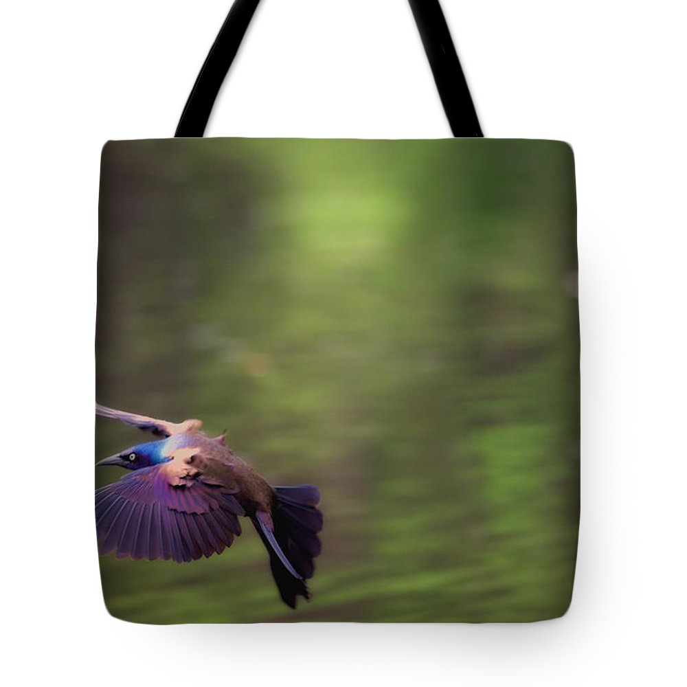 Bird Tote Bag featuring the photograph Flight Of The Grackle by Karol Livote