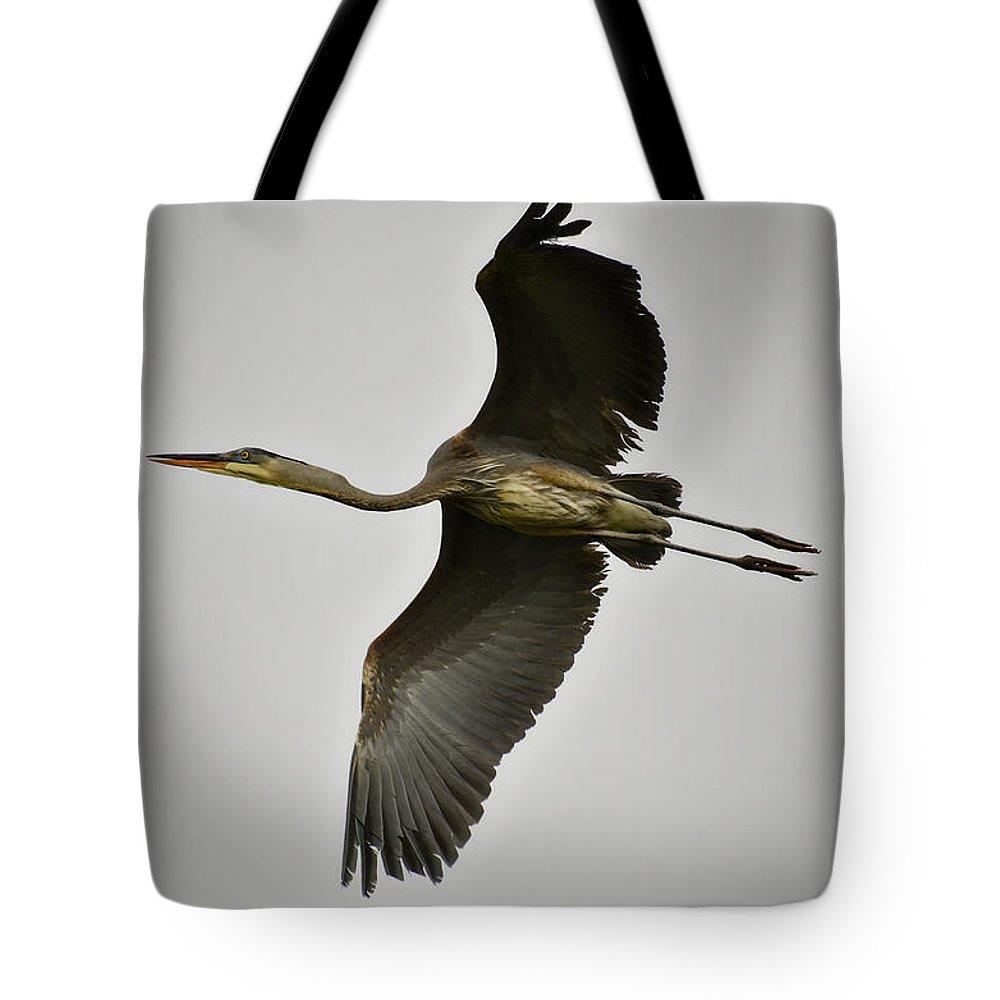 Great Blue Heron Tote Bag featuring the photograph Flight Of The Great Blue Heron by Saija Lehtonen