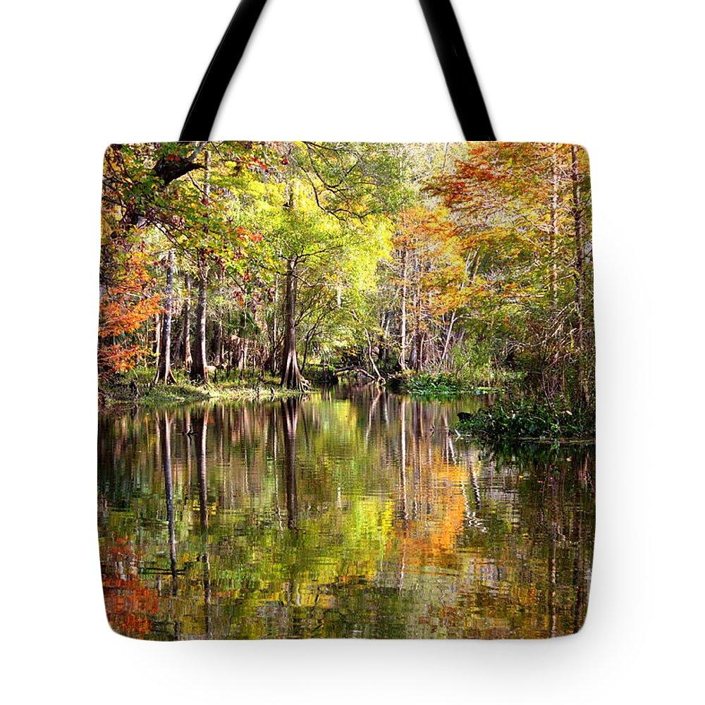 Florida Tote Bag featuring the photograph Florida Autumn Secret by Carol Groenen
