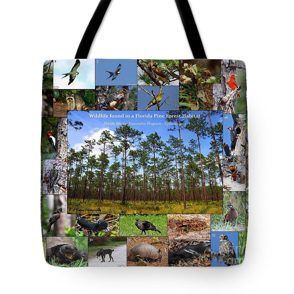 Florida Wildlife Collage Tote Bag featuring the photograph Florida Wildlife Photo Collage by Barbara Bowen