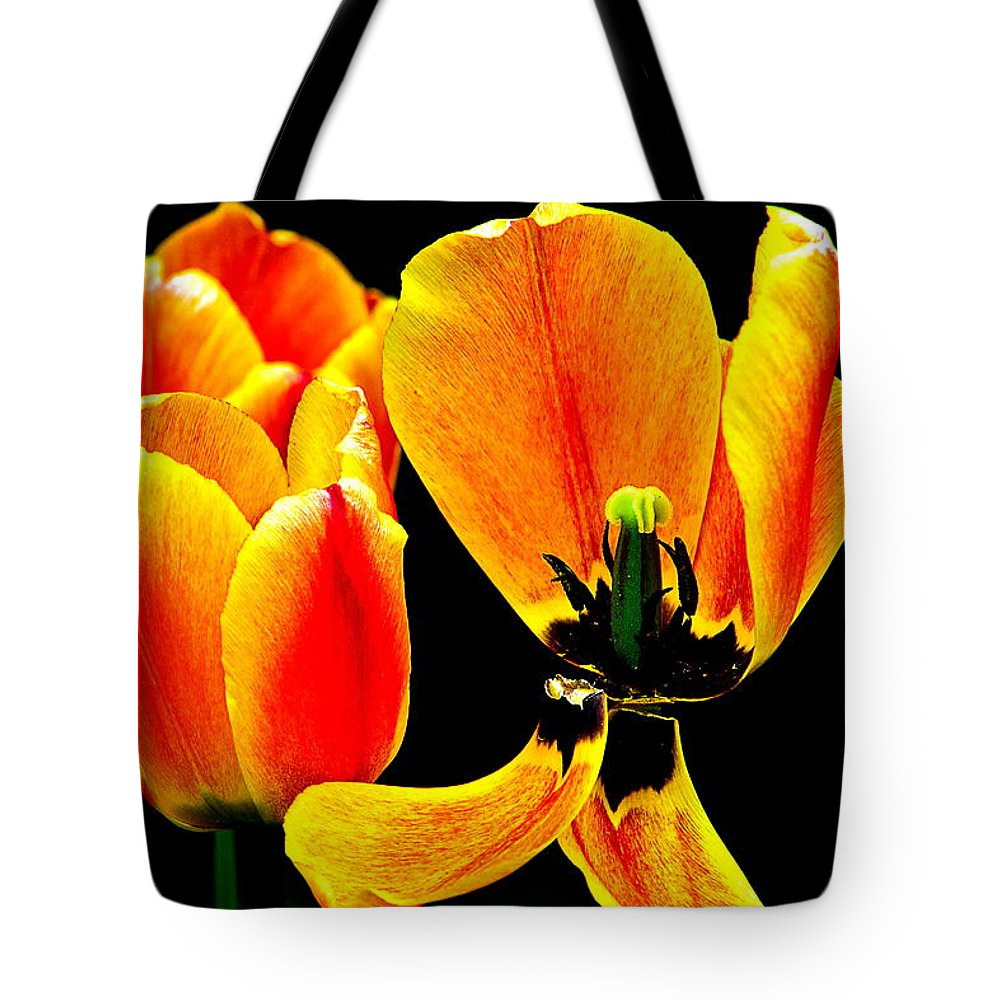 Tote Bag featuring the photograph Flower 22 by Burney Lieberman
