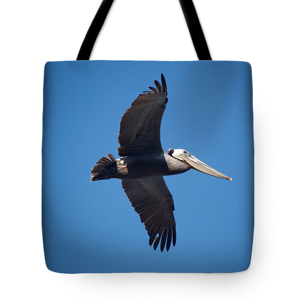 Pelican Tote Bag featuring the photograph flying Pelican by Ralf Kaiser