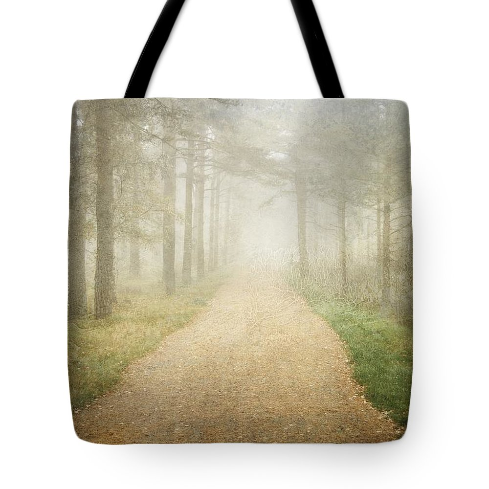 Fog Tote Bag featuring the photograph Foggy Forest by Sonya Kanelstrand