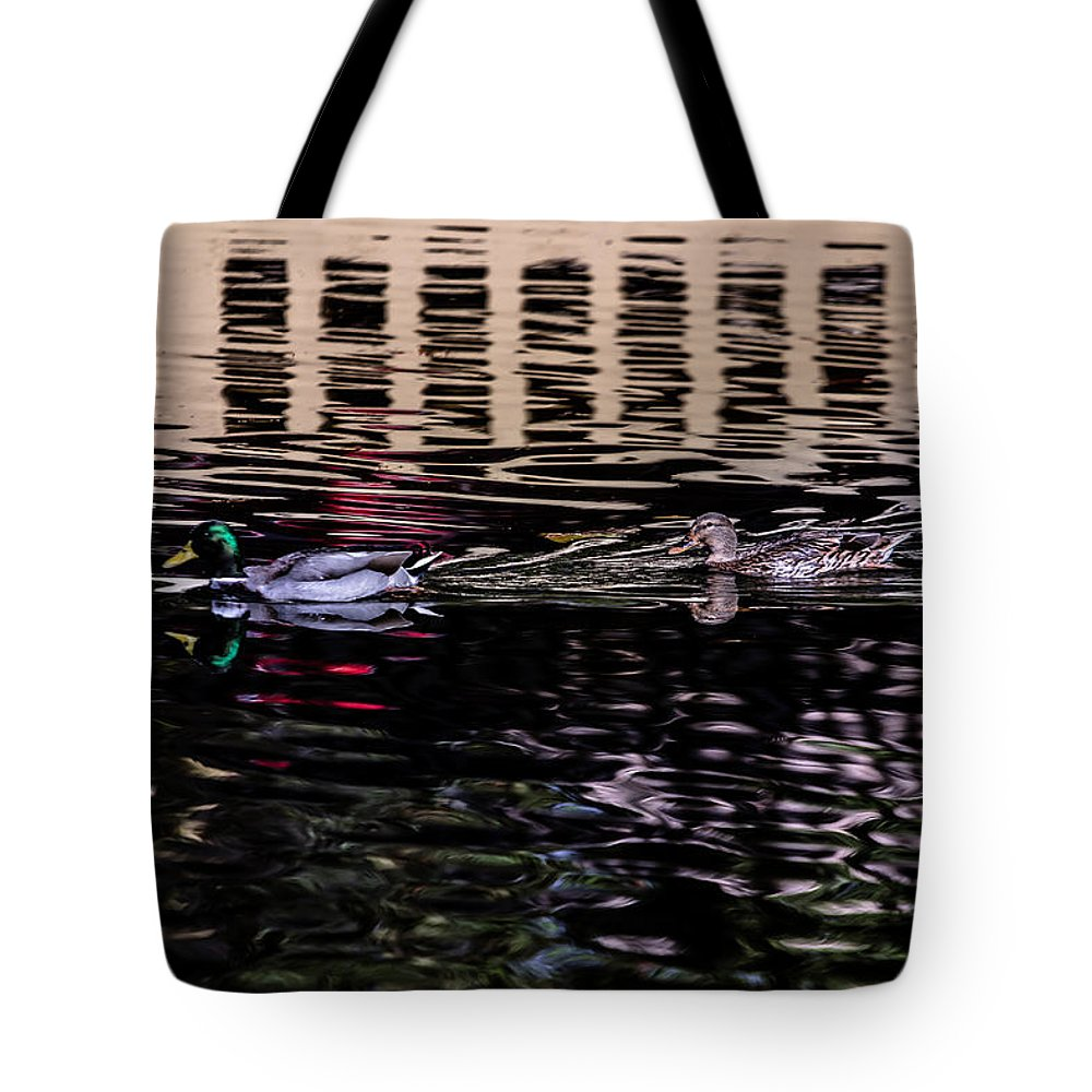 Duck Tote Bag featuring the photograph Follow Me by Edgar Laureano