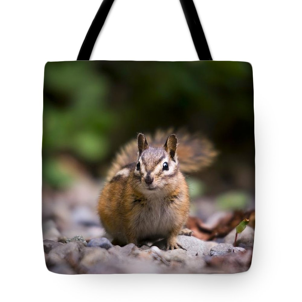 Chipmunk Tote Bag featuring the photograph Foood by Martin Cooper