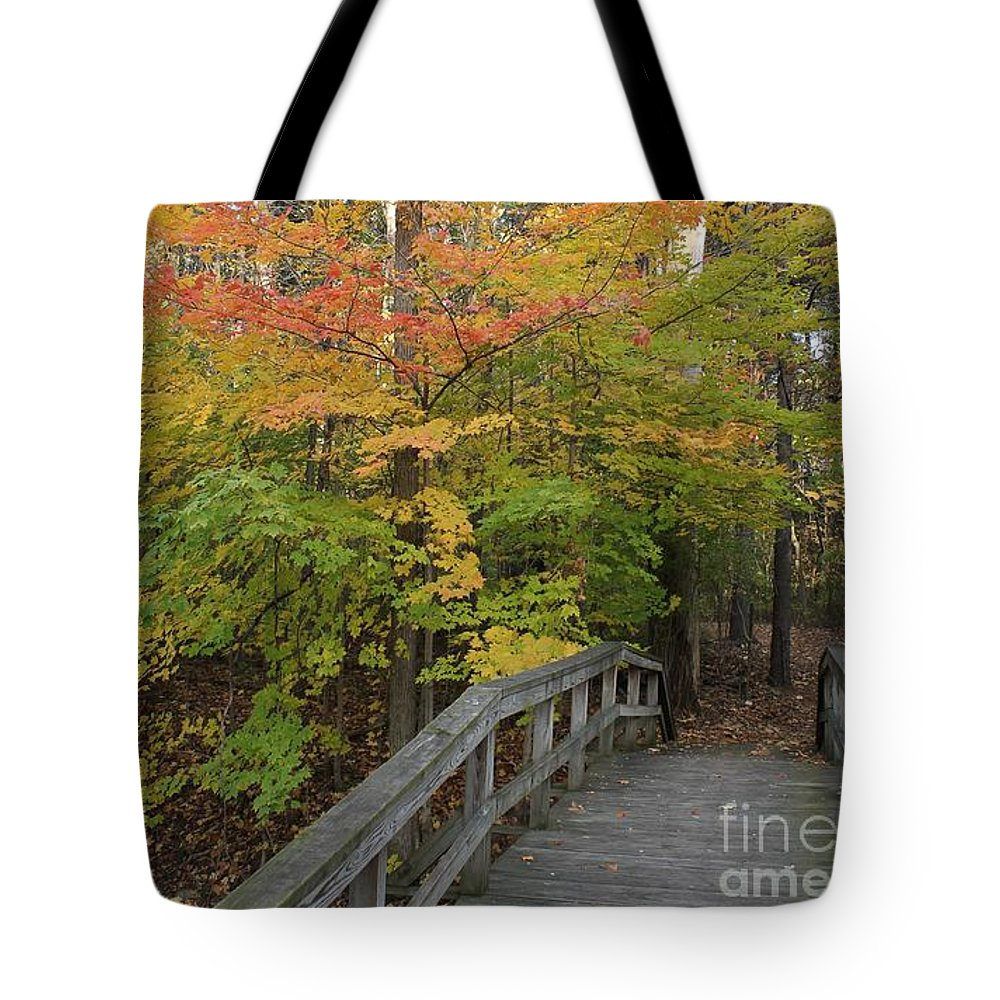 Trees Tote Bag featuring the photograph Forest Bridge by Lee Alexander