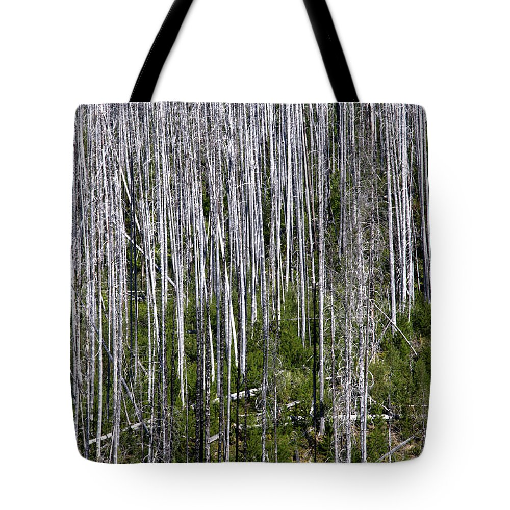 Forest Tote Bag featuring the photograph Forest Fire Sticks-2 by Paul Cannon