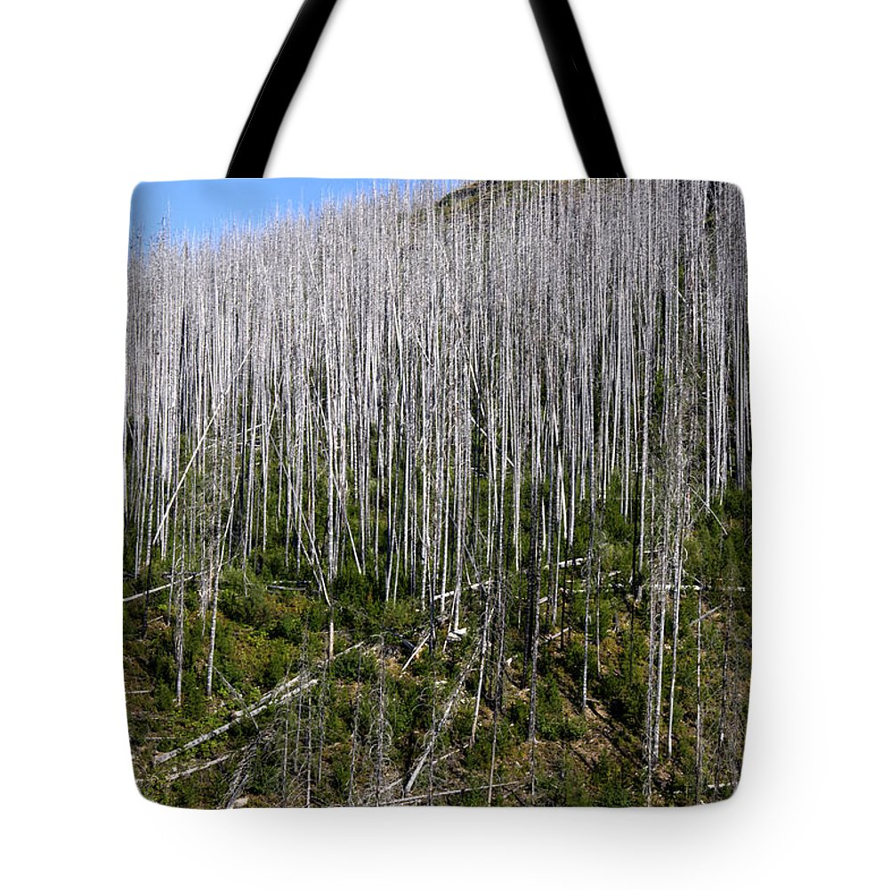 Forest Tote Bag featuring the photograph Forest Fire Sticks-3 by Paul Cannon
