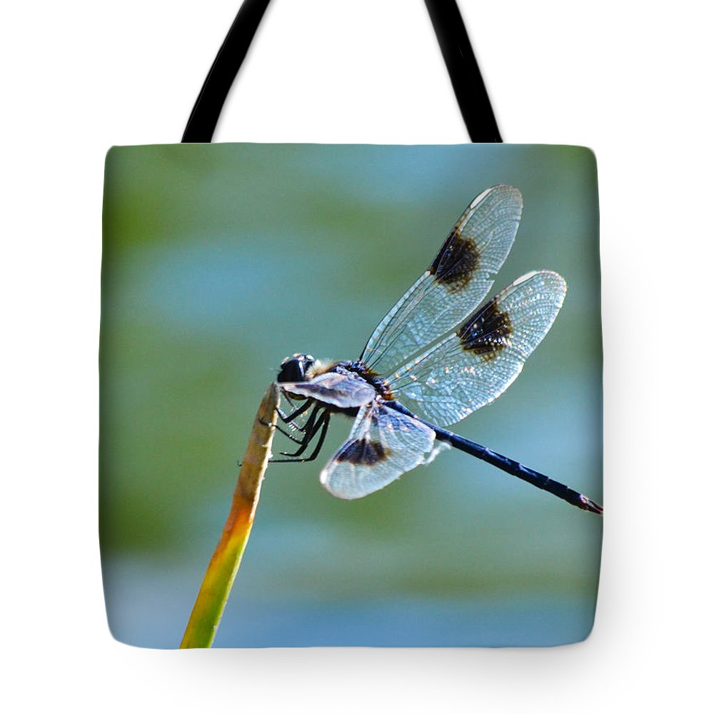 Dragonfly Tote Bag featuring the photograph Four Spotted Pennant by Melanie Moraga