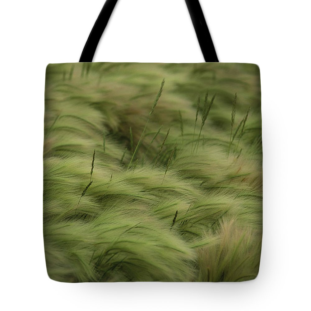 Day Tote Bag featuring the photograph Foxtail Barley And Western Wheatgrass by Annie Griffiths