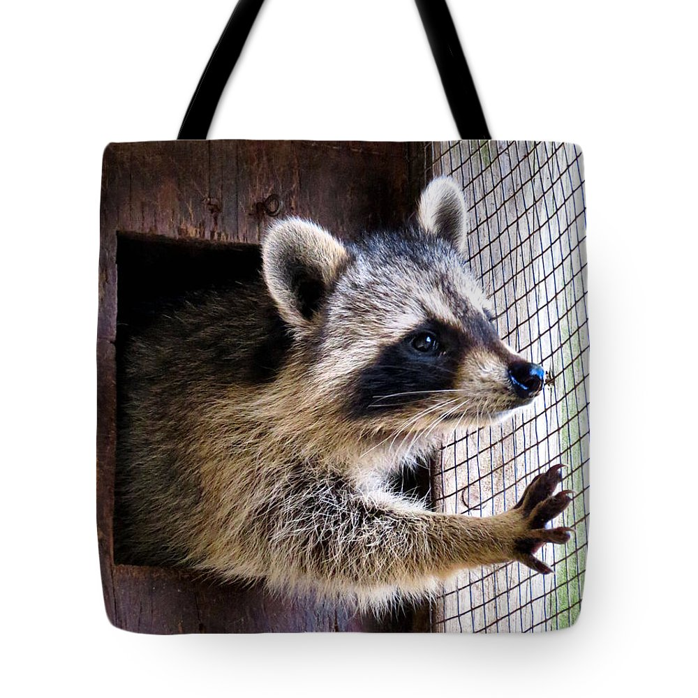 Wildlife Tote Bag featuring the photograph Freedom by Art Dingo
