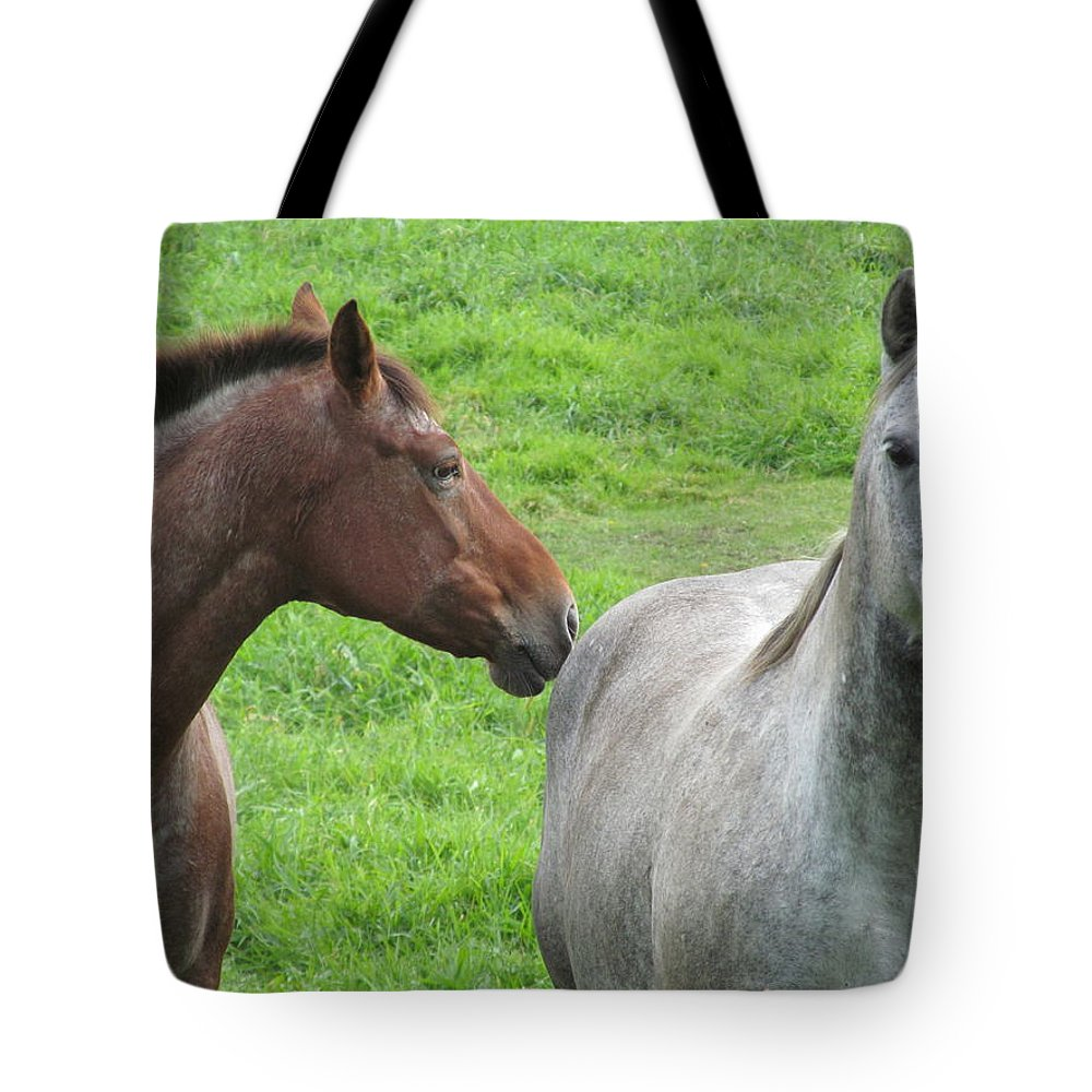 Horses Tote Bag featuring the photograph Friends by Tina M Wenger