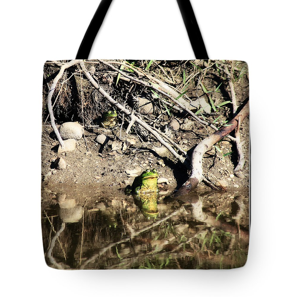 Frog Tote Bag featuring the photograph Frog King by Tiana McVay