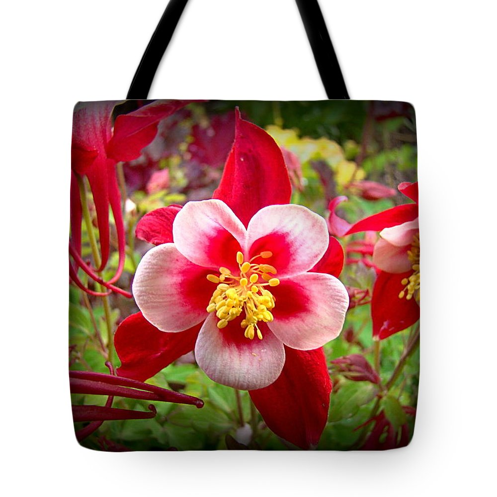Columbine Tote Bag featuring the photograph From Pink To Red by Nick Kloepping
