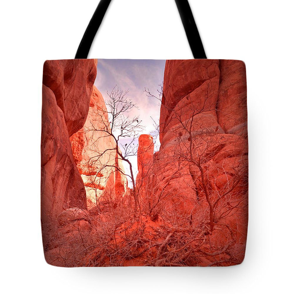 Sand Dune Arch Tote Bag featuring the photograph From The Inside by Tara Turner
