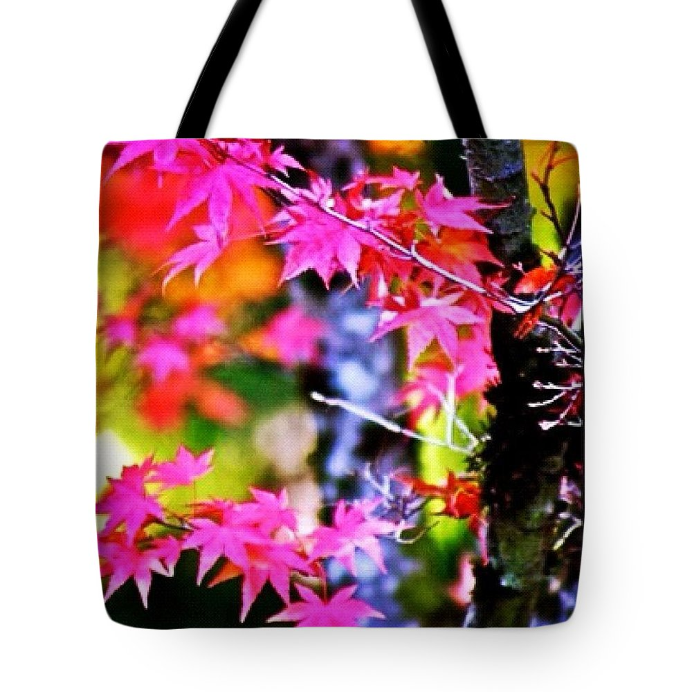 Fall Color Tote Bag featuring the photograph Fuchsia And Orange Maple Leaves by Anna Porter