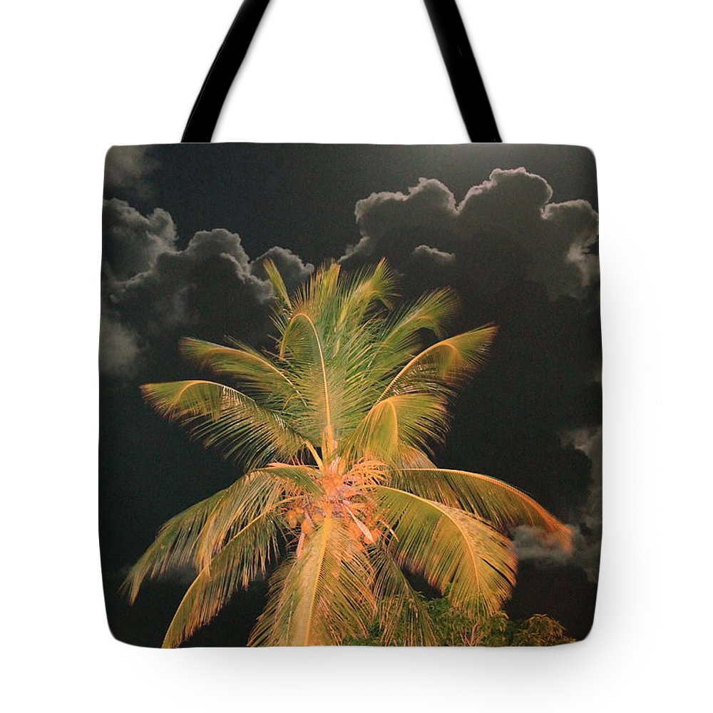 Caribbean Tote Bag featuring the photograph Full Moon In The Caribbean by Roupen Baker