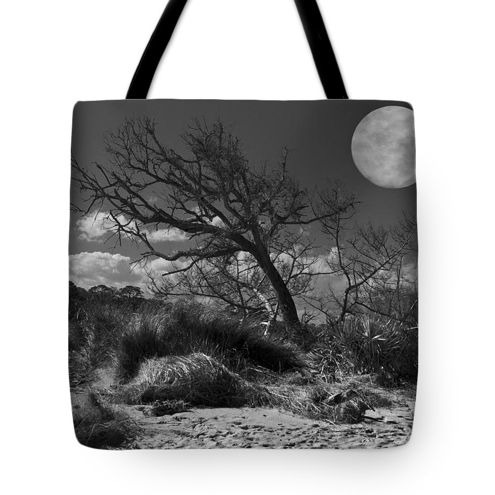 Fine Tote Bag featuring the photograph Full Moon Over Jekyll by Debra and Dave Vanderlaan