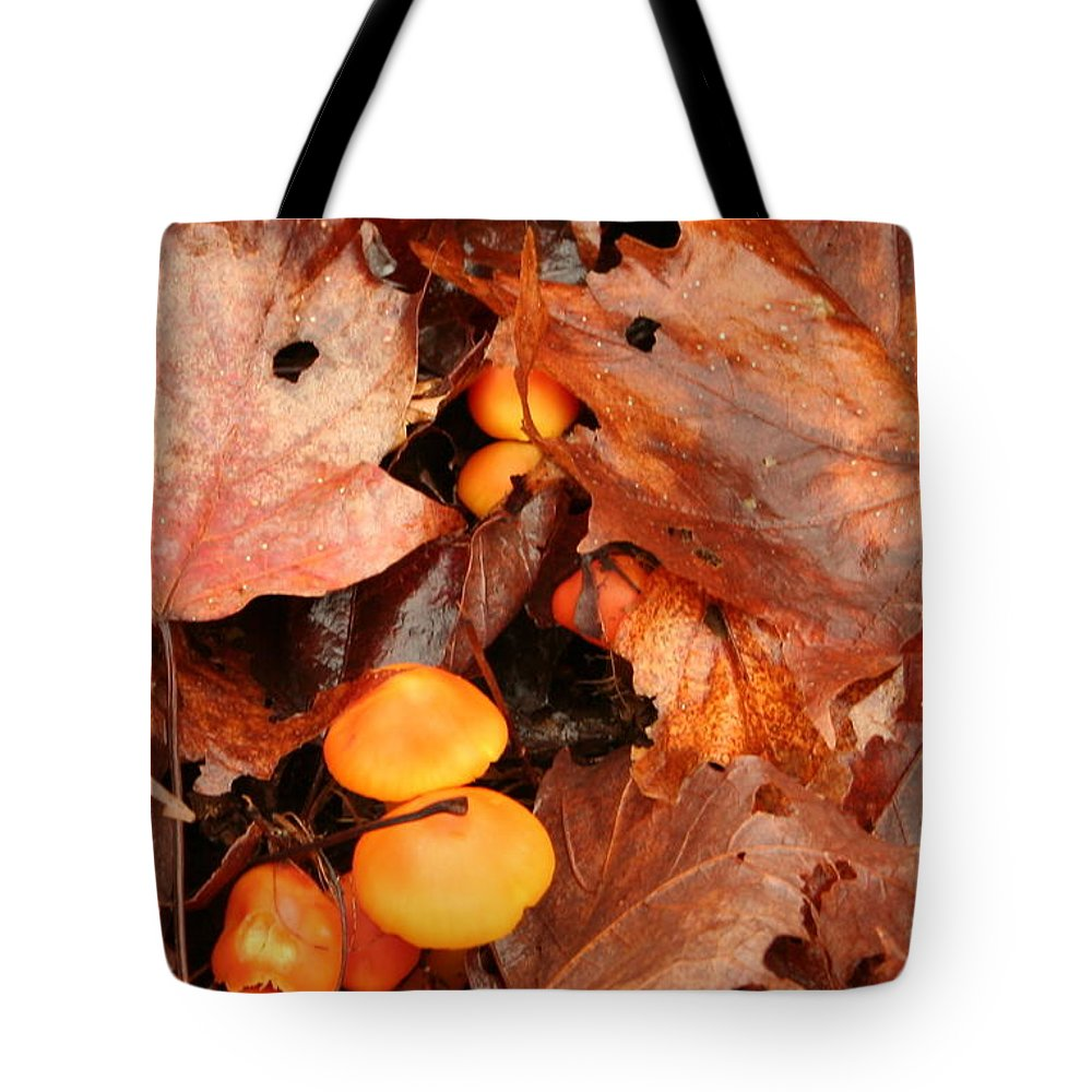 Tote Bag featuring the photograph Fungus by Joi Electa