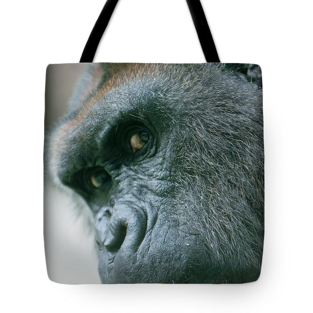 Africa Tote Bag featuring the photograph Funny Gorilla by Andrew Michael