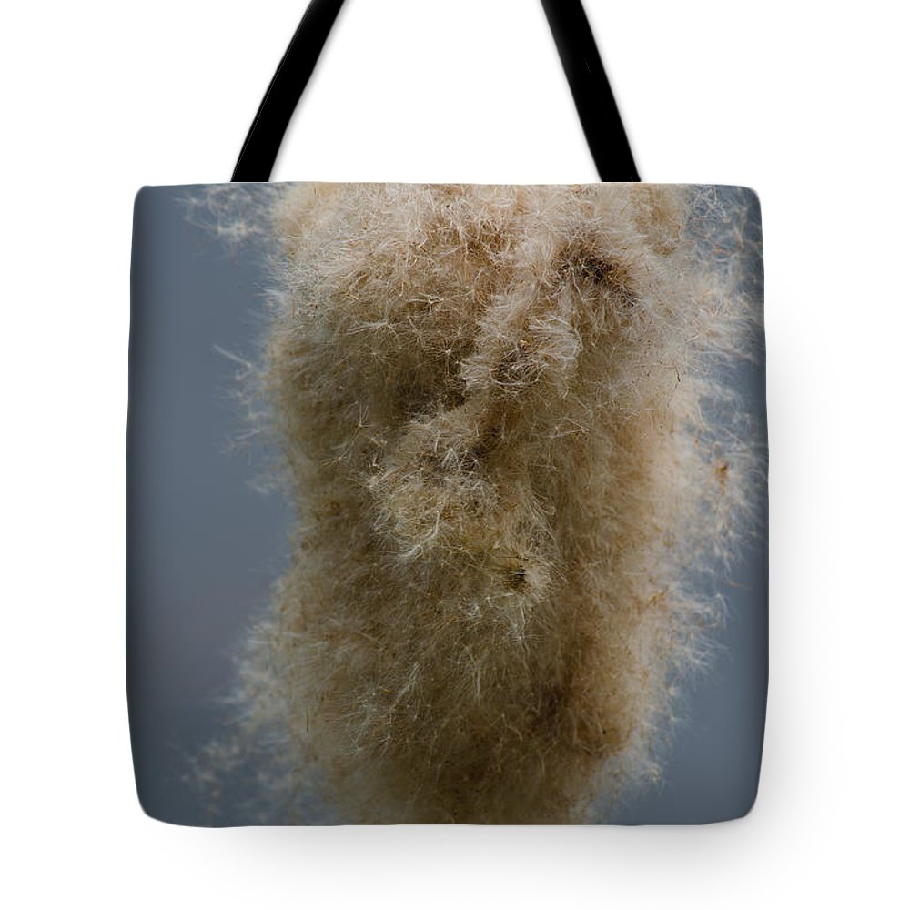 Cattail Tote Bag featuring the photograph Fuzzy Cattail by Tikvah's Hope
