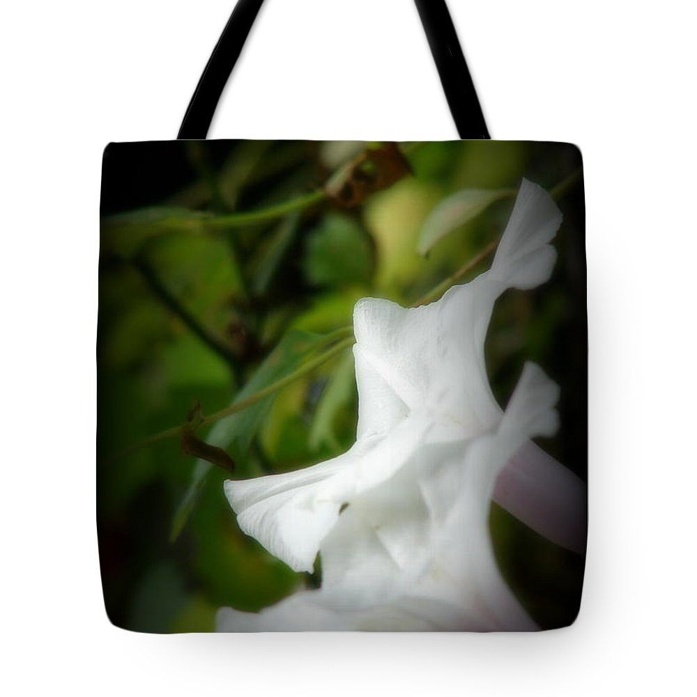 Morning Glories Tote Bag featuring the photograph Gaily by Priscilla Richardson