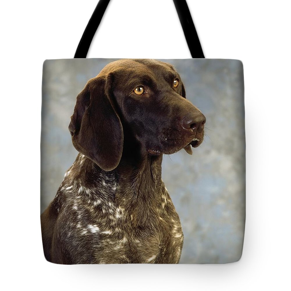 Color Tote Bag featuring the photograph German Pointer Portrait Of A Dog by The Irish Image Collection