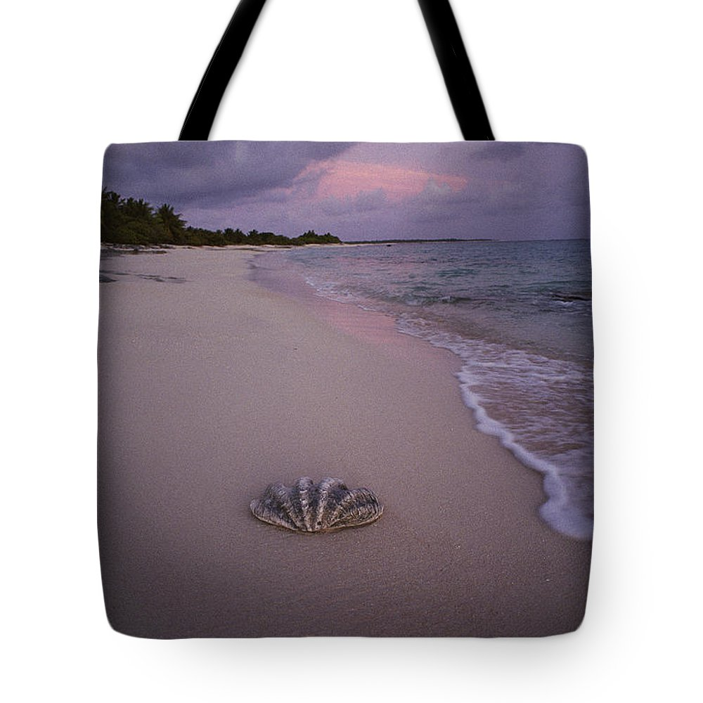 Bikini Island Tote Bag featuring the photograph Giant Clam Shell On A Deserted Beach by Bill Curtsinger