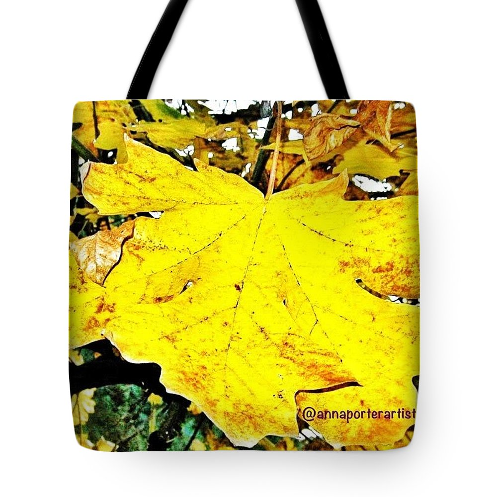 Fall Color Tote Bag featuring the photograph Giant Maple Leaf by Anna Porter