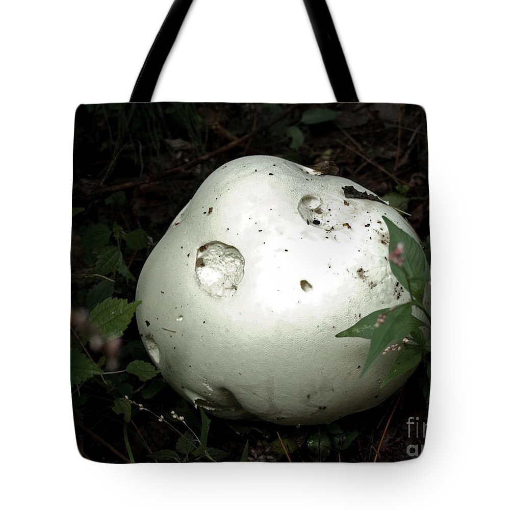 Puffball Tote Bag featuring the photograph Giant Puffball by Barbara McMahon