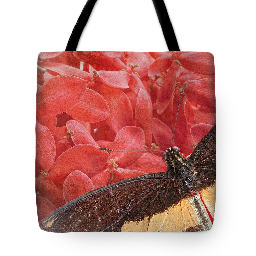 Giant Tote Bag featuring the photograph Giant Swallowtail - 3 by Rudy Umans