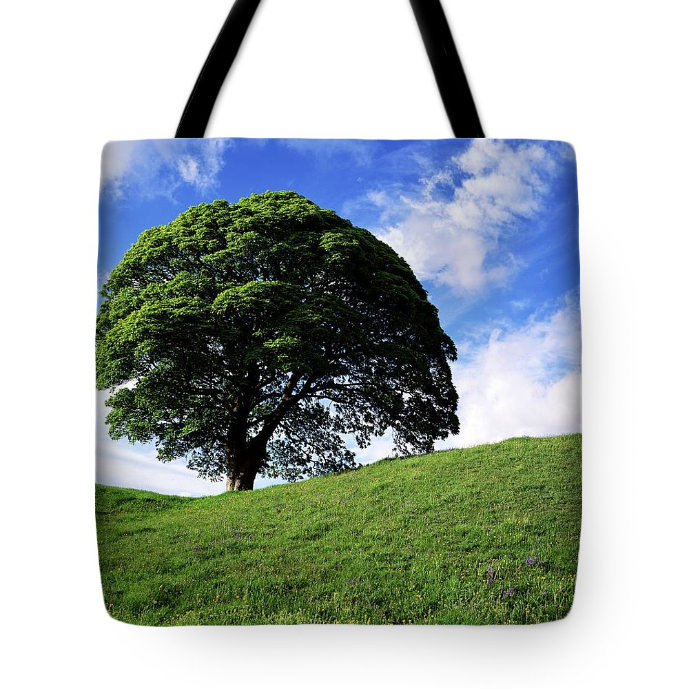 Ballynahatty Tote Bag featuring the photograph Giants Ring, Belfast, Ireland by The Irish Image Collection